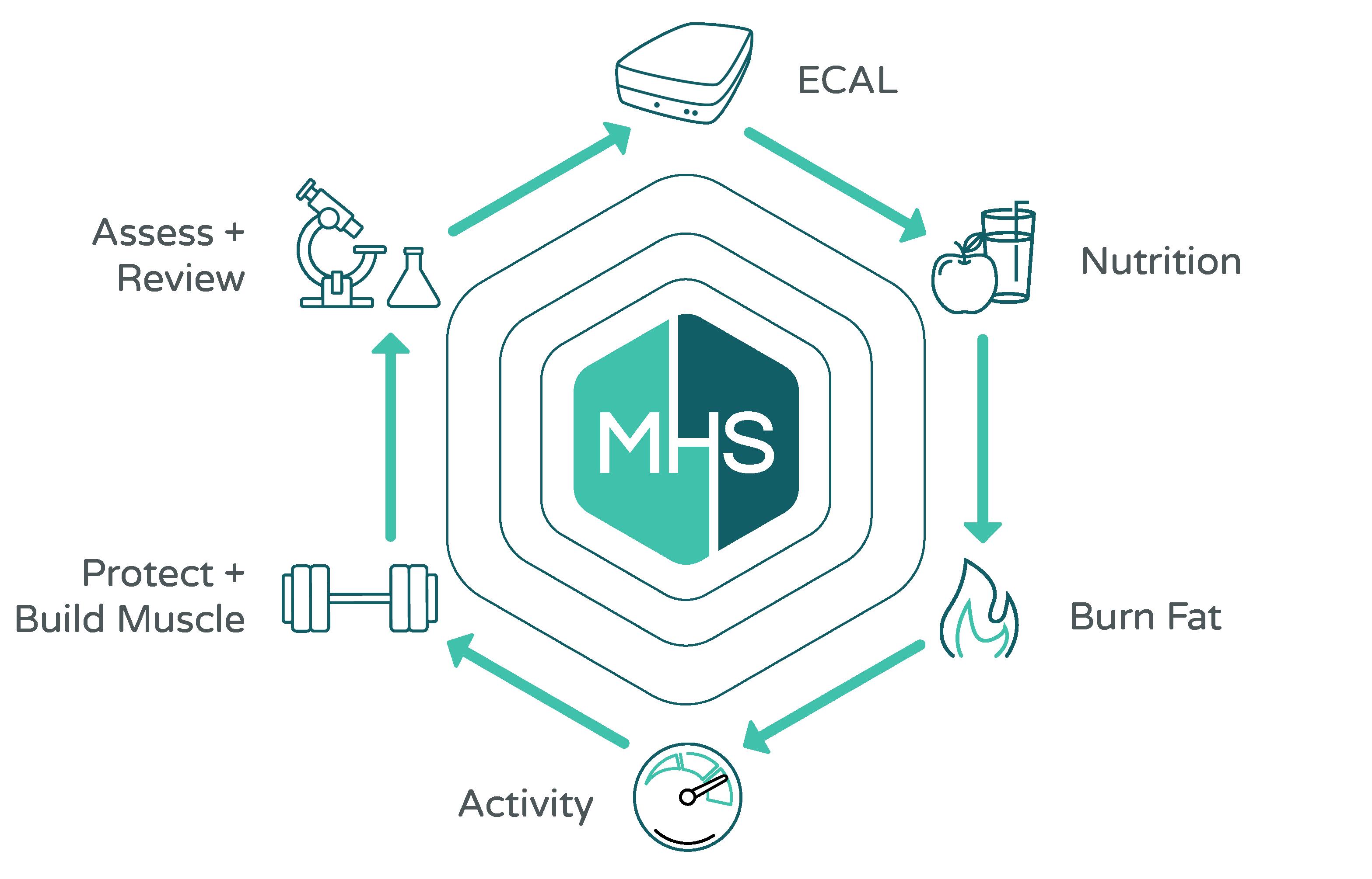 programs-diagram2